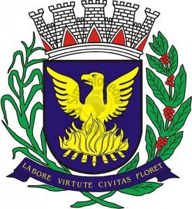 nfe campinas bandeira do municipio